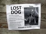 finding-tessa-postergood