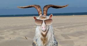 satans_beach